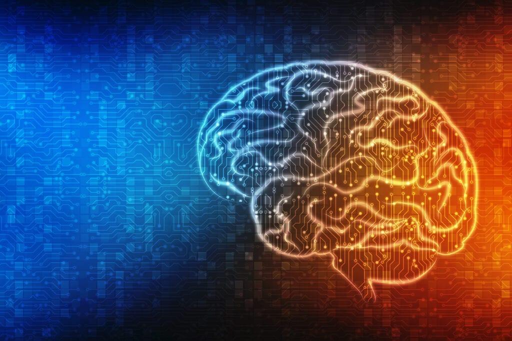 What is Traumatic Brain Injury?